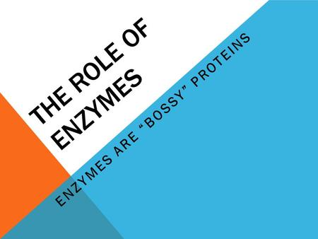 "THE ROLE OF ENZYMES ENZYMES ARE ""BOSSY"" PROTEINS."