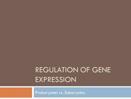 REGULATION OF GENE EXPRESSION Prokaryotes vs. Eukaryotes.