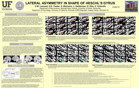 LATERAL ASYMMETRY IN SHAPE OF HESCHL'S GYRUS C.M. Leonard, S.D. Towler, S. Welcome, L. Halderman, R. Otto, C. Chiarello Department of Neuroscience, McKnight.