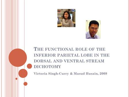 T HE FUNCTIONAL ROLE OF THE INFERIOR PARIETAL LOBE IN THE DORSAL AND VENTRAL STREAM DICHOTOMY Victoria Singh-Curry & Masud Husain, 2009.