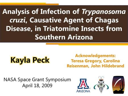 Analysis of Infection of Trypanosoma cruzi, Causative Agent of Chagas Disease, in Triatomine Insects from Southern Arizona Acknowledgements: Teresa Gregory,