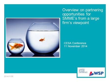 Overview on partnering opportunities for SMME's from a large firm's viewpoint CESA Conference 11 November 2014 2014/11/08.