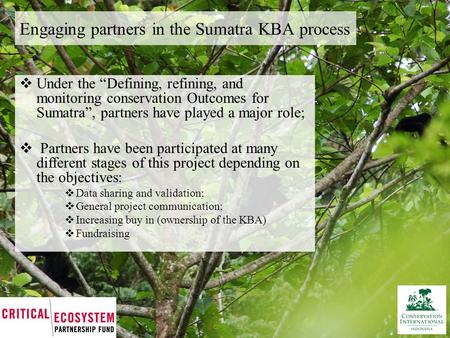 "Engaging partners in the Sumatra KBA process  Under the ""Defining, refining, and monitoring conservation Outcomes for Sumatra"", partners have played a."