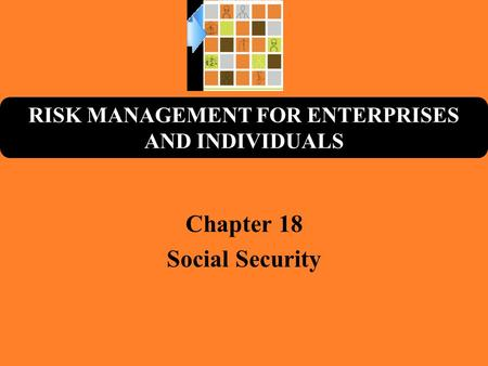 RISK MANAGEMENT FOR ENTERPRISES AND INDIVIDUALS Chapter 18 Social Security.