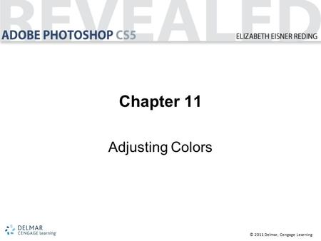 © 2011 Delmar, Cengage Learning Chapter 11 Adjusting Colors.