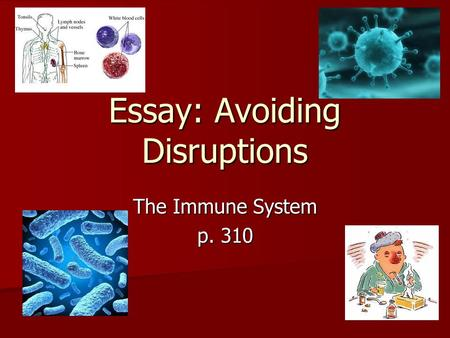 Essay: Avoiding Disruptions