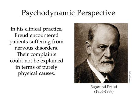 Psychodynamic Perspective In his clinical practice, Freud encountered patients suffering from nervous disorders. Their complaints could not be explained.