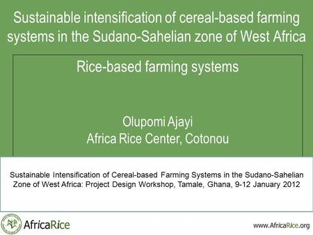 Sustainable intensification of cereal-based farming systems in the Sudano-Sahelian zone of West Africa Rice-based farming systems Olupomi Ajayi Africa.