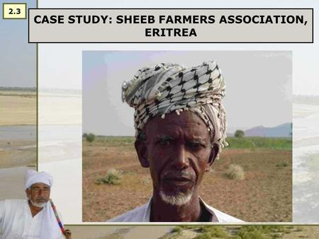 CASE STUDY: SHEEB FARMERS ASSOCIATION, ERITREA 2.3.