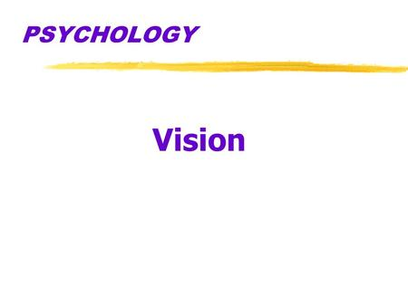 PSYCHOLOGY Vision Say the color when you see it GREEN BLUE ORANGE RED.