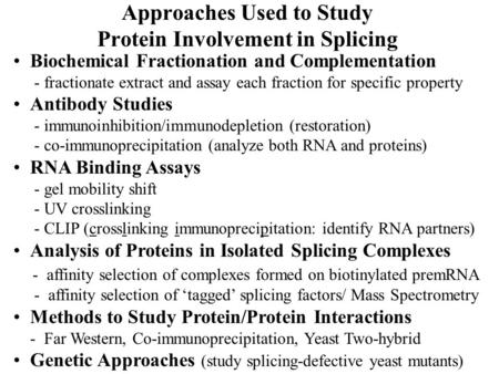 Approaches Used to Study Protein Involvement in Splicing Biochemical Fractionation and Complementation - fractionate extract and assay each fraction for.