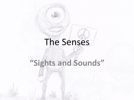 "The Senses ""Sights and Sounds"". Anatomy of External Eye Eyes protected by eyelids, which meet at canthus Eyelashes at borders Tarsal glands – secrete."