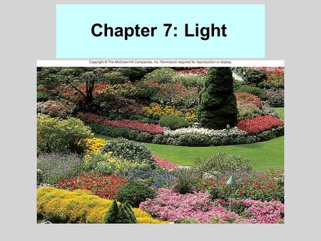Chapter 7: Light Figure 7.8 Good APCs: 2, 3, 5, 6, 9, 10, 14, 18, 19, 20, 22, 23, 25, 28, 29, 30, 31, 42, 45, 46, and 48.