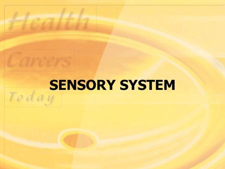 SENSORY SYSTEM. Structure and Function Sensory system consists of receptors in specialized cells and organs that perceive changes in the internal and.