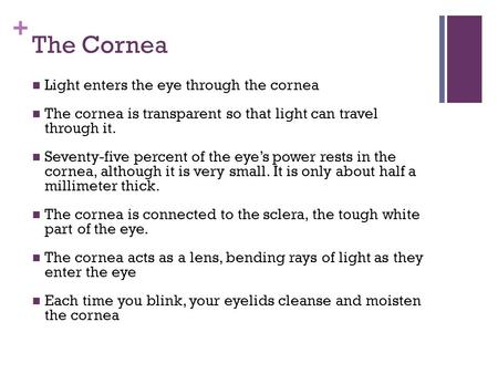 The Cornea Light enters the eye through the cornea