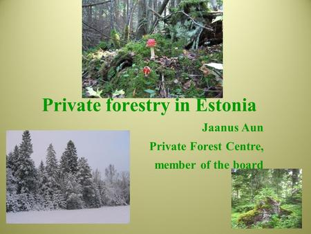 Private forestry in Estonia Jaanus Aun Private Forest Centre, member of the board.