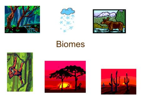 Biomes Understanding the general characteristics of each biome leads to a global view, in which one gains a general understanding of the range of biodiversity.
