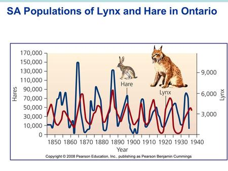 SA Populations of Lynx and Hare in Ontario. Environmental Systems and Ecosystem Ecology.