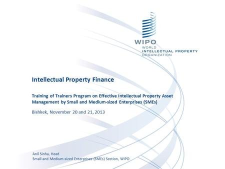 Intellectual Property Finance Training of Trainers Program on Effective Intellectual Property Asset Management by Small and Medium-sized Enterprises (SMEs)