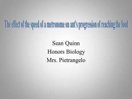 Sean Quinn Honors Biology Mrs. Pietrangelo. Hypothesis Problem- What would the ants reaction be if it was exposed to music or vibrations. Hypothesis-