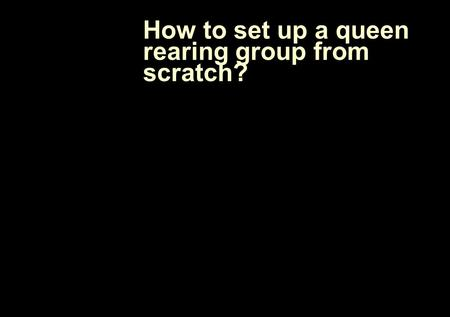 How to set up a queen rearing group from scratch?.