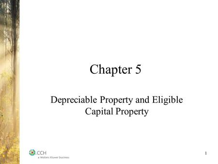 Depreciable Property and Eligible Capital Property