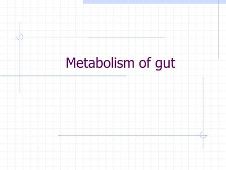 Metabolism of gut. Function of the small intestine Absorption (monosaccharides, fat, aminoacids, vitamines, water, metals and trace elements) Defence.