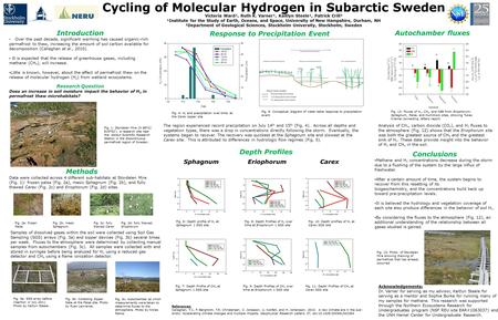 Cycling of Molecular Hydrogen in Subarctic Sweden Victoria Ward¹, Ruth K. Varner¹, Kaitlyn Steele¹, Patrick Crill² ¹Institute for the Study of Earth, Oceans,