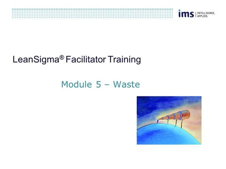 LeanSigma ® Facilitator Training Module 5 – Waste.