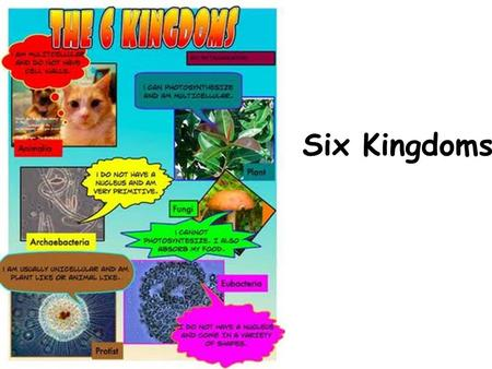 Six Kingdoms. Key terms Autotrophic – Producer -makes its own food Heterotrophic – Consumer -can't make its own food – consumes other organisms Unicellular.
