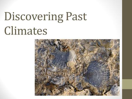 Discovering Past Climates