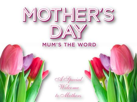 When did Mother's Day start? Proverbs 31:10-31 8 Mothers in the Bible EVESARAH REBEKAH JOCHEBED HANNAH BATHSHEBA ELIZABETH MARY WOMEN OF THE BIBLE.