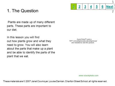 1. The Question Next Plants are made up of many different