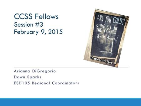 CCSS Fellows Session #3 February 9, 2015 Arianna DiGregorio Dawn Sparks ESD105 Regional Coordinators.