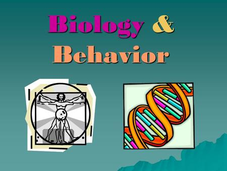 Biology & Behavior. The NERVOUS SYSTEM  What is its function? –Involved in thinking –Involved in dreaming –Involved in feeling –Involved in moving –Involved.