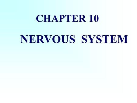 CHAPTER 10 NERVOUS SYSTEM central nervous system (CNS) peripheral nervous system (PNS) The composition of nervous system: (include the brain and the.