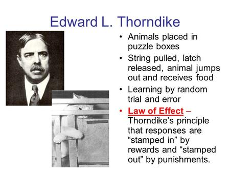 An introduction to the theory of thorndike the animal intelligence