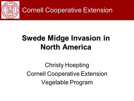 Swede Midge Invasion in North America Christy Hoepting Cornell Cooperative Extension Vegetable Program Cornell Cooperative Extension.