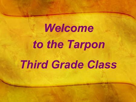 Welcome to the Tarpon Third Grade Class. A Bit About Ms. Crockett  Born and raised in Port Jefferson, Long Island, NY.  Attended Clemson University.