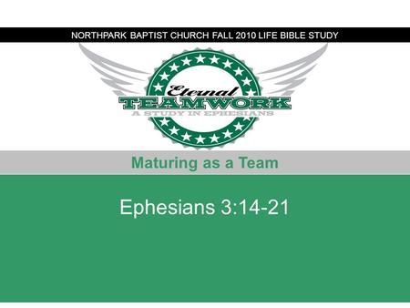 Alleged Bomber NORTHPARK BAPTIST CHURCH FALL 2010 LIFE BIBLE STUDY Maturing as a Team Ephesians 3:14-21.