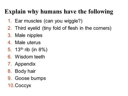 Explain why humans have the following 1.Ear muscles (can you wiggle?) 2.Third eyelid (tiny fold of flesh in the corners) 3.Male nipples 4.Male uterus 5.13.