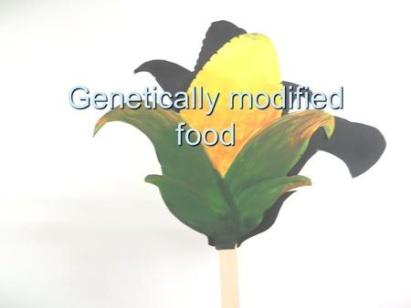 Genetically modified food. The genetic modification Change of the genes of a plant in a laboratory Change of the genes of a plant in a laboratory Insertion.
