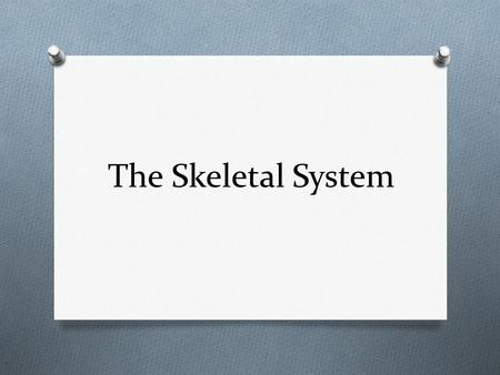 The Skeletal System. Skeletal System: Made of Connective Tissue O Bone: hard inorganic matrix of calcium salts O Compact: forms shaft and ends, contains.