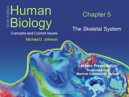 Chapter 5 The Skeletal System.
