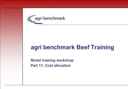 Agri benchmark Beef Training Model training workshop Part 11: Cost allocation.