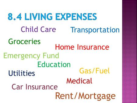 Transportation Groceries Gas/Fuel Home Insurance Car Insurance Education Rent/Mortgage Utilities Child Care Medical Emergency Fund.