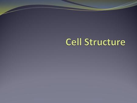 Cells…. A cell is the smallest unit that is capable of performing life functions. The size & shape of a cell relates to its function (job it does).