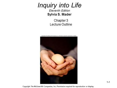 1-1 Inquiry into Life Eleventh Edition Sylvia S. Mader Chapter 3 Lecture Outline Copyright The McGraw-Hill Companies, Inc. Permission required for reproduction.