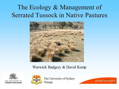 The Ecology & Management of Serrated Tussock in Native Pastures Warwick Badgery & David Kemp The University of Sydney Orange.