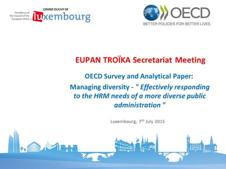 OECD Survey and Analytical Paper: Managing diversity -  Effectively responding to the HRM needs of a more diverse public administration  EUPAN TROÏKA.